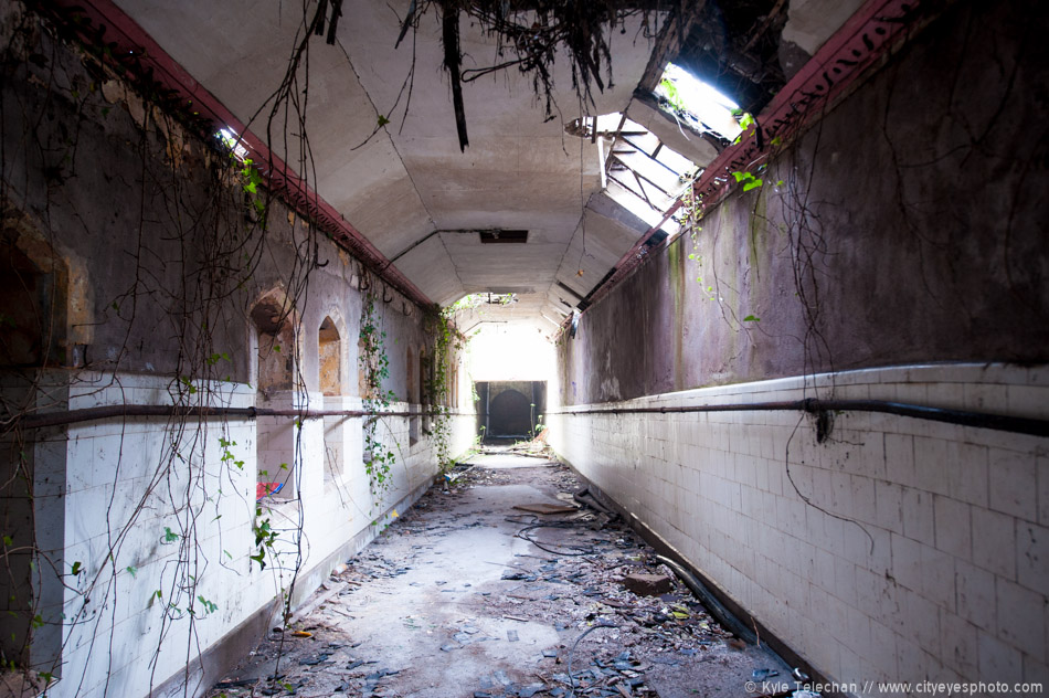 Northern Ireland Asylum
